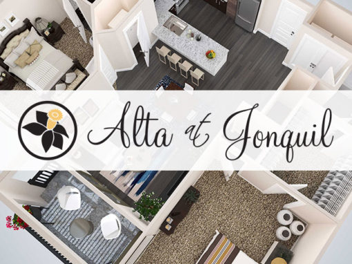 Alta of Jonquil